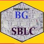 BG/SBLC FOR LEASE